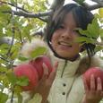 りんちゃんとりんご2