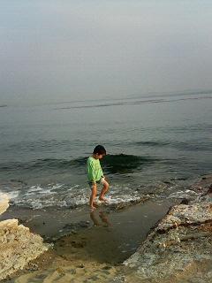 野間灯台、浜辺